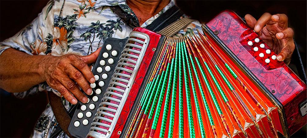 Instrumentos armónicos El acordeón_